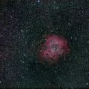 Rosette Nebula,                                AC1000