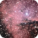 NGC281 Pacman nebula, unguided.,                                Juan Pablo (Obser...