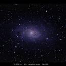 M33 - Triangulum Galaxy,                                Paulo Pereira