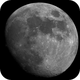 Waxing Moon mosaic,                                mazeppa