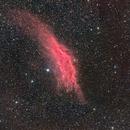 California Nebula with Samyang 135mm,                                Stephen Kirk