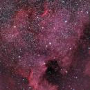 North America Nebula,                                Don Walters