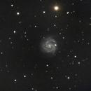 NGC 3184,                                Sektor