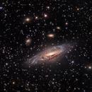 NGC7331 Group,                                Denis Janky