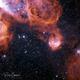 The Gabriela Mistral Nebula (HOO) - NGC3324,                                Ricky Goodyear