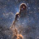 IC1396,                                Derek Mellor