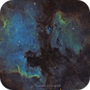 "North América and Pélican Nébula ""SHO"",                                Camille COLOMB"