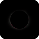 The Solar Chromosphere and Prominences,                                Damien Cannane