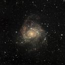 IC342,                                Gordon Hansen
