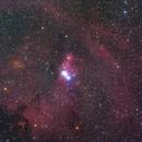 NGC 2264,                                yshoon