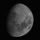 Moon June 2020,                                pterodattilo
