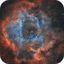 The Rosette Nebula in BiColor - with SkyWatcher PDS 150/750 and SV503,                                pmneo