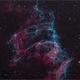 NGC 6992 - The Eastern Veil Nebula,                                Randal Healey