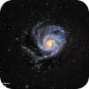 M101 - The Pinwheel Galaxy in LRGB:  Things don't always work out!,                                Patrick Cosgrove
