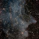 IC2118 - Witch Head Nebula - OSC,                                Álmos Balási