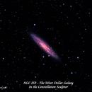 NGC 253 - The Silver Dollar Galaxy,                                Paul Borchardt
