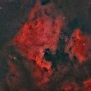 Complesso nebuloso Nord America,                                Federico Bossi