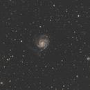 M101 widefield,                                Steed Yu