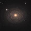 NGC 488,                                Gary Imm