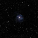 M101,                                Ric