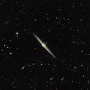 Needle Galaxy (and satellites),                                Frank Kane