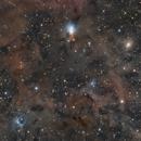 Ngc1333 , Vdb12, Vdb13, Vdb16 , B1 , B2 , B202, B203 , B204, B205 , B206  , Perseus Nebular Complex,                                Alberto Vezzani
