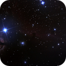 First try on Horse Head Nebula - B33,                                Damien7400