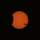 Partial Solar Eclipse - 2006-03-29 and seagull,                                gigiastro