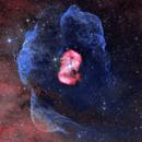 NGC 6164,                                Rocco Sung