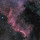 NGC7000 - North America Nebula,                                Almos Balasi