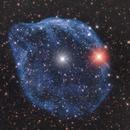 Dolphin Nebula - Sh2 308,                                Adriano