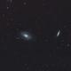 M81 Bode's Galaxy and M82 Cigar Galaxy,                                David Rees