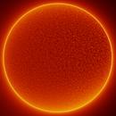 Sun - Ha - 13:50 - 24 March 2020,                                Roberto Botero