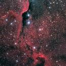 Elephant Trunk IC1396,                                Astrowood