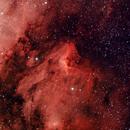 Nebulosa Pellicano,                                Haribok