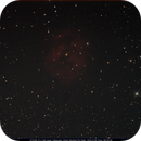 IC 5146 - Cocoon Nebula,                                Robert Johnson