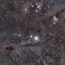 Barnard 7 widefield,                                Pavle Gartner