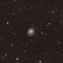 M101,                                Joey Troy