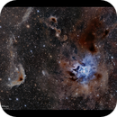 From LDN1171 to the Iris and Ghost nebulae,                                Göran Nilsson