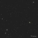 Galaxies in Leo - M95, 96, 105,                                Damien Cannane