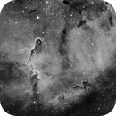 IC 1396 Elephant Trunk Nebula in H-alpha,                                HaSeSky