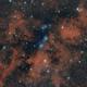 NGC 6914,                                Giuseppe Bertaglia