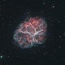 M1 Crab Nebula - HOO - 1m telescope,                                jamiechang917