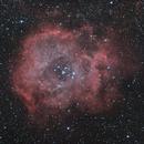 Rosette nebula NGC 2237 on RASA 8,                                Piet Vanneste
