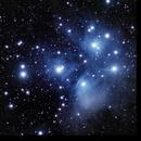 M45 - The Pleiades,                                Randy Roy