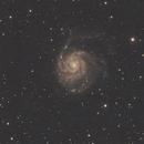 M101 at full moon,                                Darius Kopriva