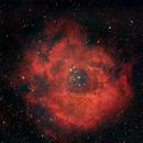 Rosette Nebula,                                lenny