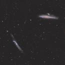 NGC 4631 Group (HaLRGB),                                Roman Pearah