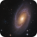 M81 galaxy group,                                Michael S.