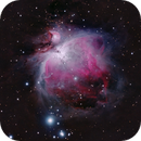 M42 The Great Orion Nebula,                                Andy Wellington